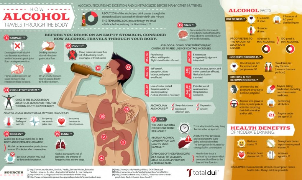 how-alcohol-travels-through-the-body_50ca3deb65aab_w1038-1-1024x610